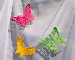 Krajkoví motýli