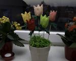 Tulipány - jarní dekorace
