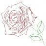 Růže - pro quiltování