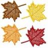Skupina listů - javor