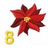 Adventní kalendář - č. 8 Vánoční hvězda