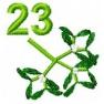 Adventní kalendář - č. 23 Jmelí