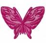 Krajkový motýl 3