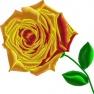 Růže stolistá