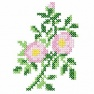 Šípková růže křížkovým stehem